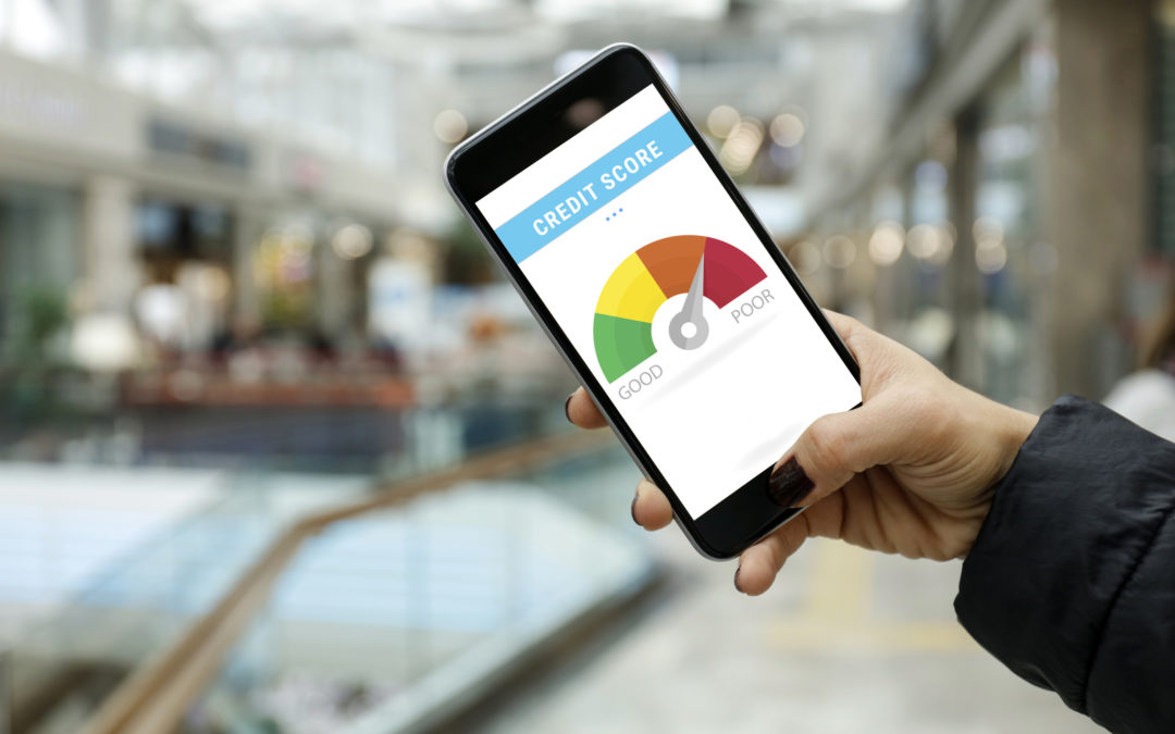 Credit Score calculator